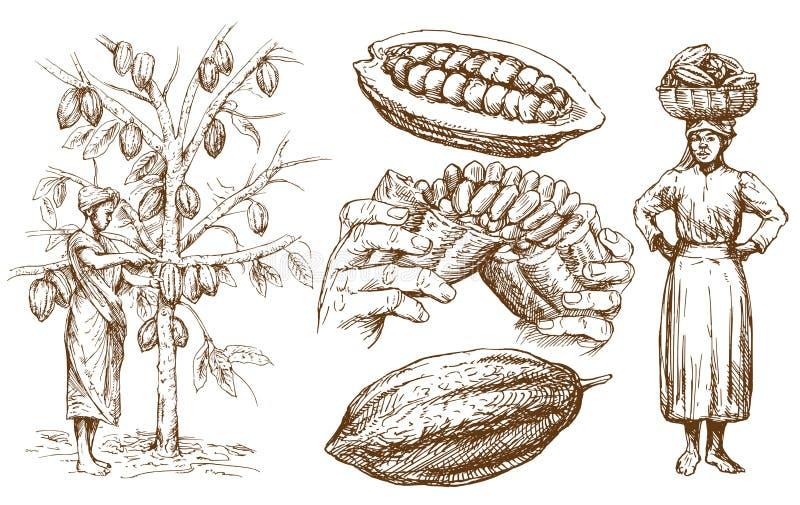 Colección del chocolate Ilustración drenada mano del vector stock de ilustración