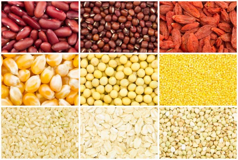 Download Colección del grano foto de archivo. Imagen de grano - 41913598