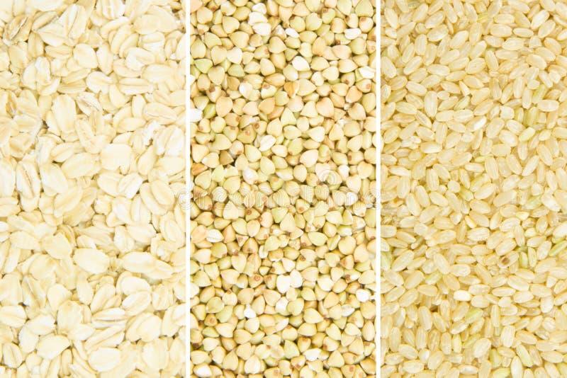 Download Colección del grano imagen de archivo. Imagen de mosaico - 41913879