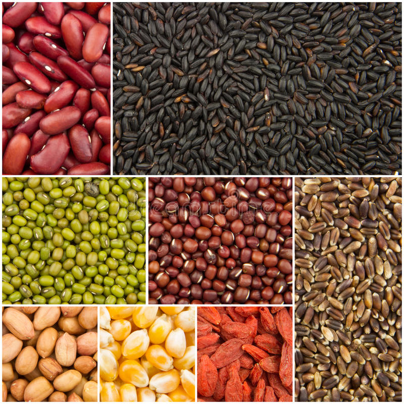 Download Colección del grano imagen de archivo. Imagen de grano - 41914543