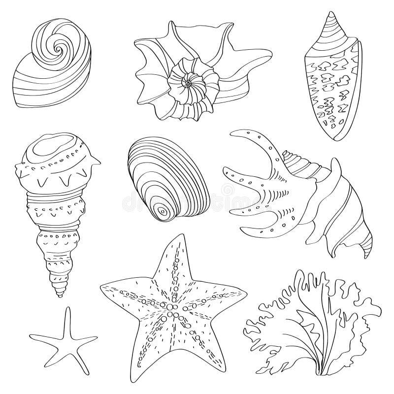 Colección del mar conchas marinas lineares en un fondo blanco stock de ilustración