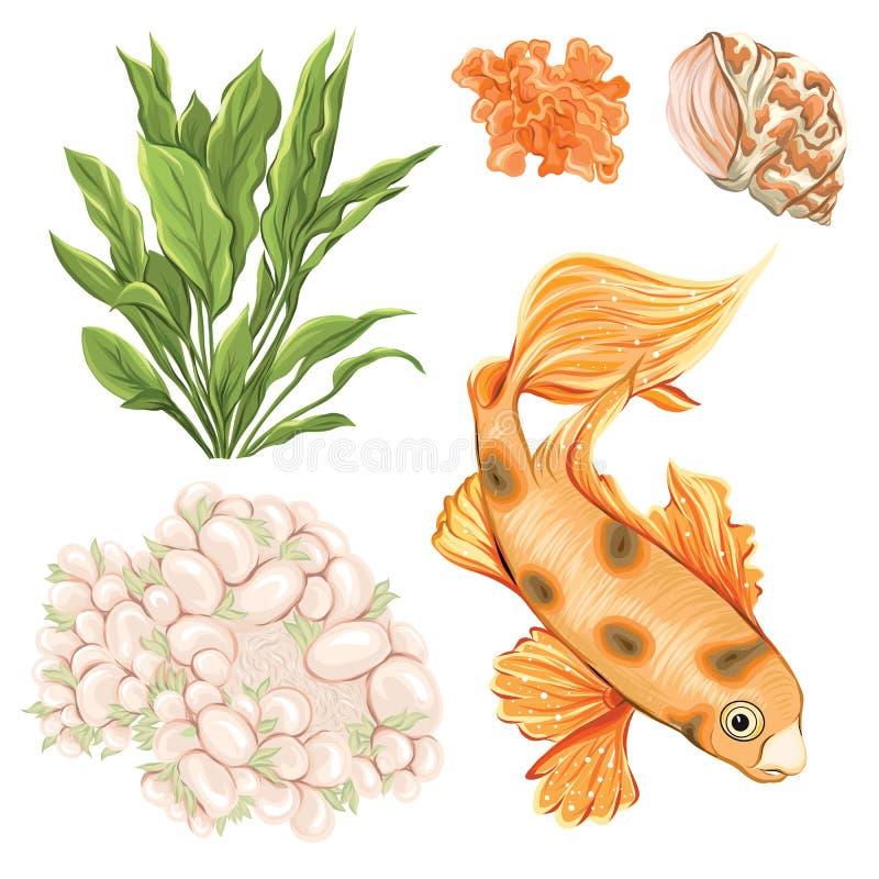 Colección del mar Ejemplo coloreado dibujado mano original libre illustration