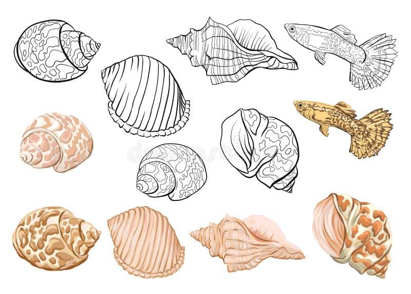 Colección del mar Ejemplo coloreado dibujado mano original stock de ilustración