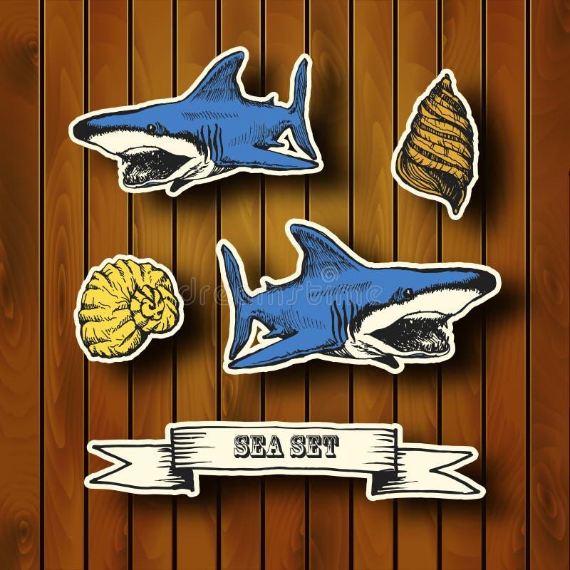 Colección del mar Ejemplo dibujado mano adentro ilustración del vector