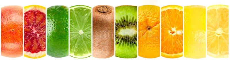Colección del panorama de frutas tropicales enteras y del corte fotos de archivo libres de regalías