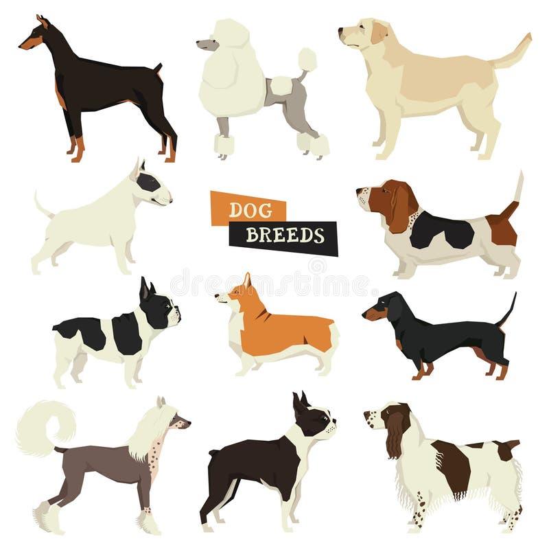 Colección del perro Estilo geométrico Sistema del vector de 11 razas del perro libre illustration