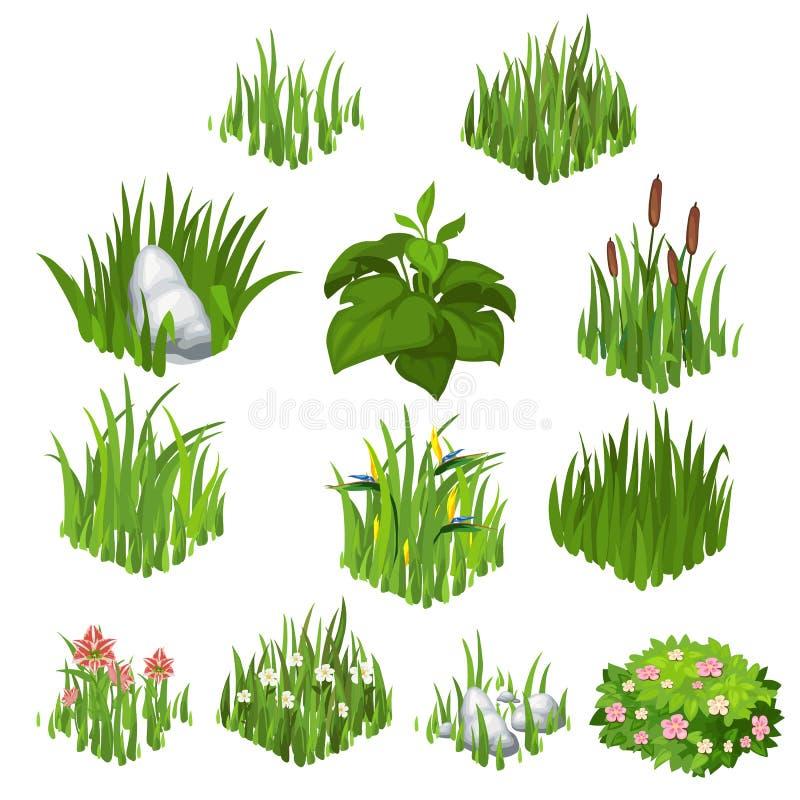 Colección del vector de diversas hierba y flores libre illustration