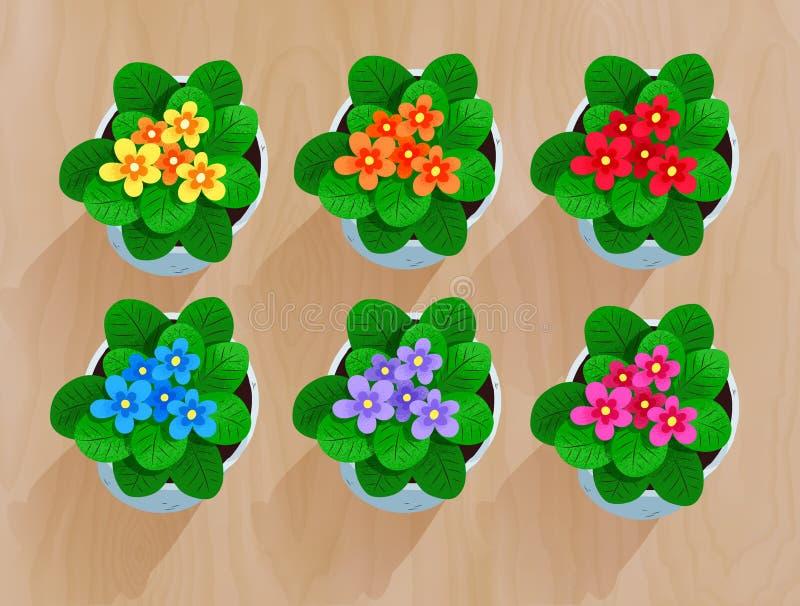 Colección del vector de la visión superior de flores en pote stock de ilustración