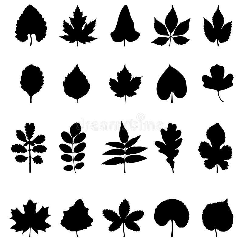Colección del vector de siluetas de la hoja stock de ilustración