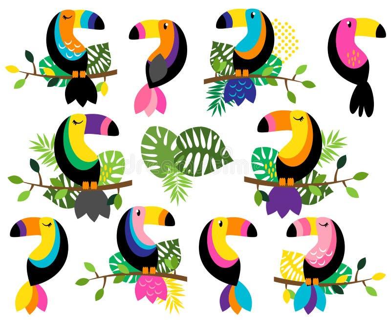 Colección del vector de tucanes brillantes y coloridos y de hojas tropicales ilustración del vector