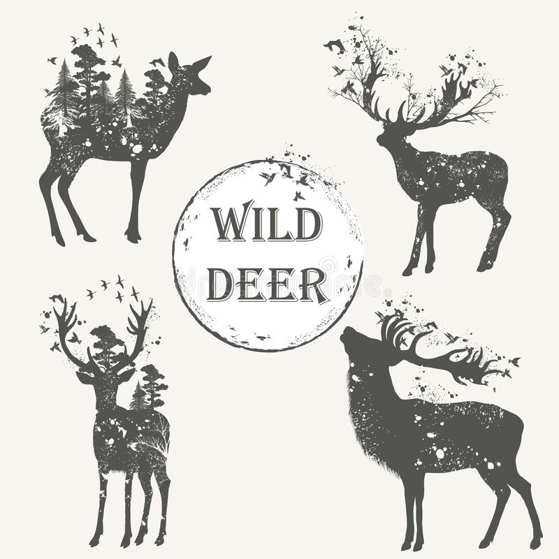 Colección elegante del vector silhoue detallado animal del bosque de alto ilustración del vector