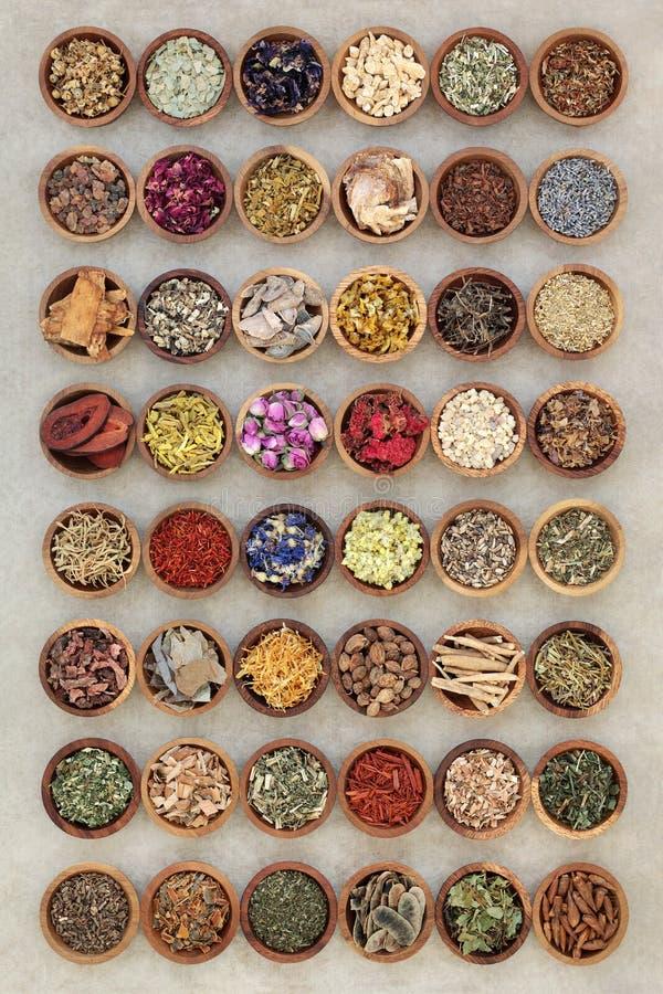 Colección grande de la medicina herbaria imagen de archivo