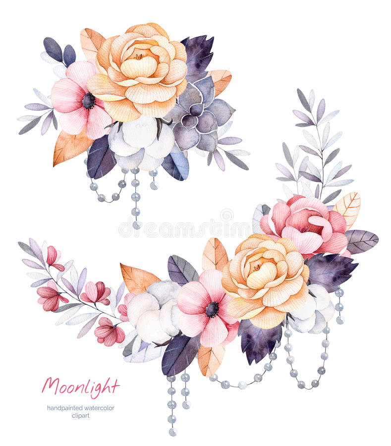 Colección hermosa del invierno con las ramas, plantas de algodón, flores, secuencias de la perla libre illustration