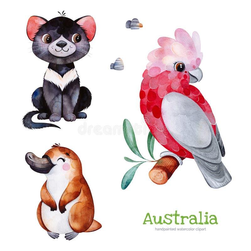 Colección linda con el diablo tasmano, ornitorrinco, cacatúa, piedras ilustración del vector
