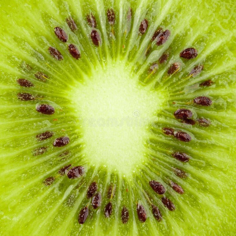 Colección macra del alimento - rebanada del kiwi foto de archivo libre de regalías
