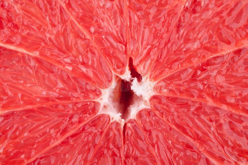 Colección macra del alimento - textura del pomelo fotografía de archivo
