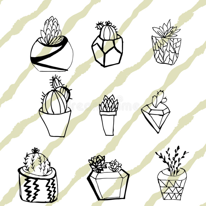 Colección a mano de cactus y de succulents Illustra del vector stock de ilustración