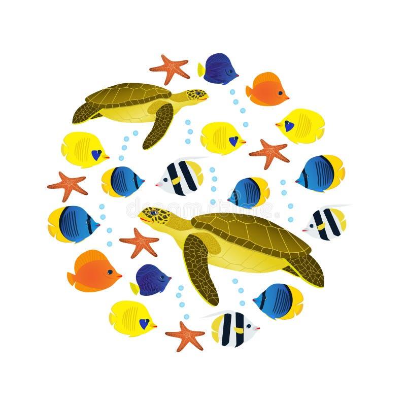 Colección subacuática de los animales en el fondo blanco Pescados coloridos del arrecife de coral y tortugas verdes Composición d stock de ilustración