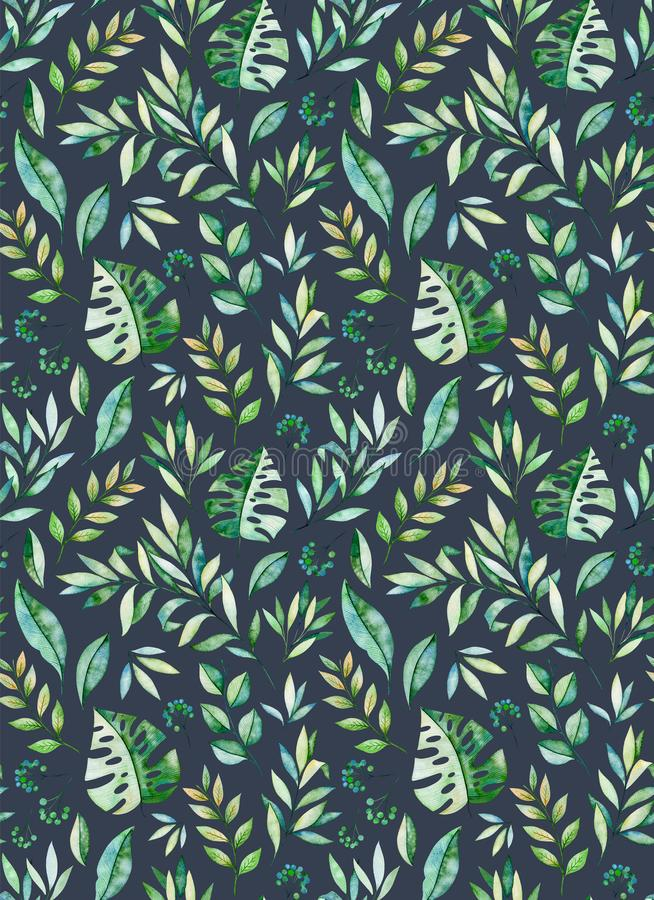 Colección tropical del bosque libre illustration