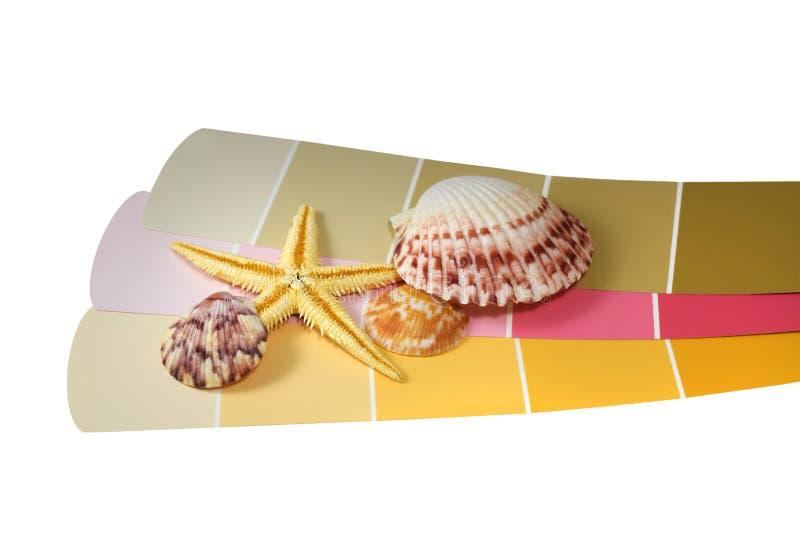 Colección y estrellas de mar de la concha marina en microprocesadores de la pintura foto de archivo