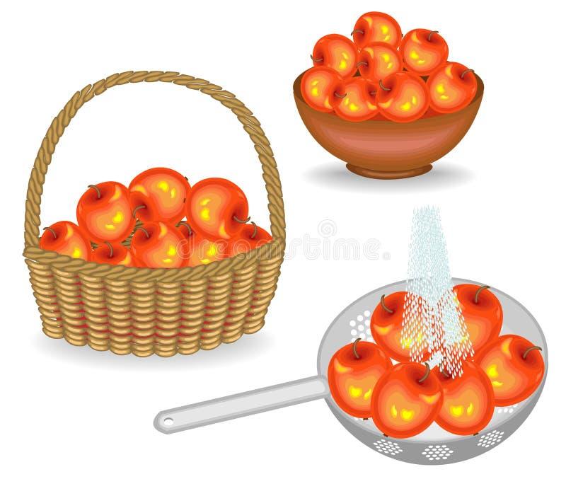 colecci?n Una cosecha abundante de manzanas Las frutas frescas en una cesta, lavada debajo de una corriente del agua, pusieron en ilustración del vector