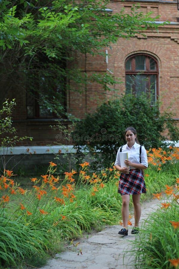 Colegiala de la muchacha con una carpeta en sus manos foto de archivo libre de regalías