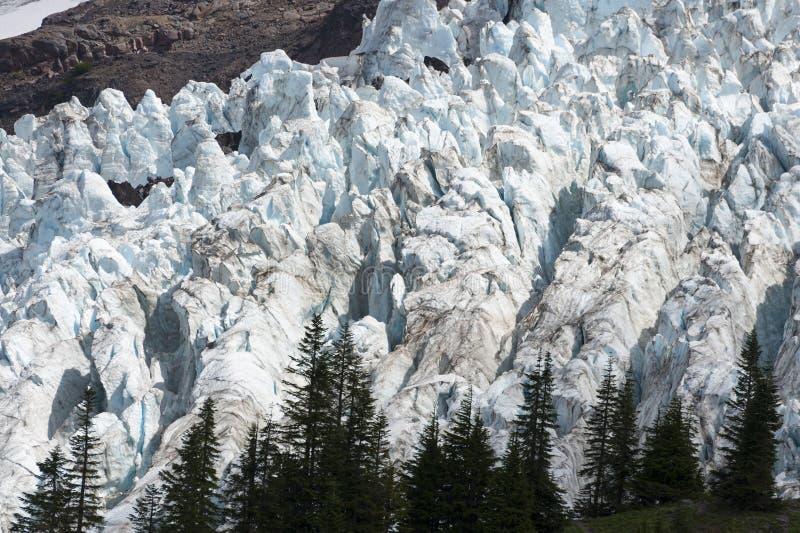 Coleman Glacier. stock images