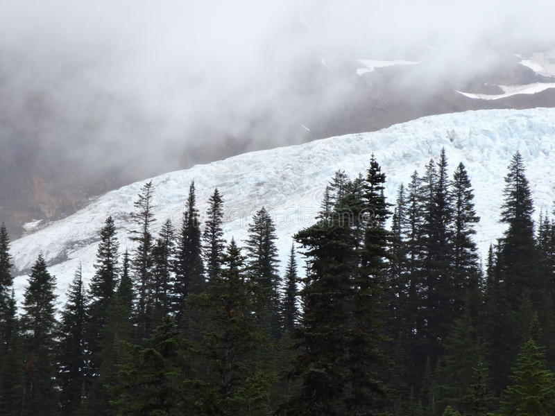 Coleman Glacier monteringsbagare fotografering för bildbyråer