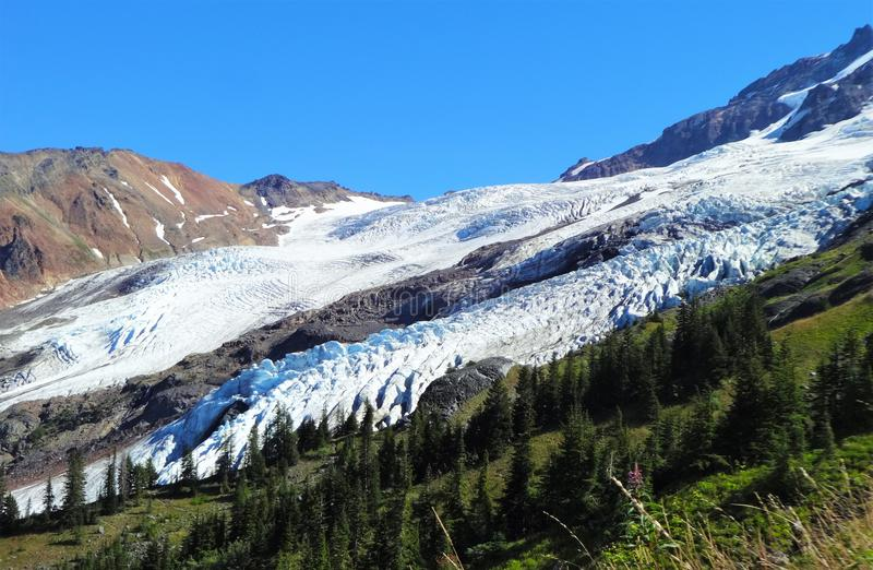Coleman Glacier on Mount Baker. The view of Coleman Glacier on Mount Baker from Heliotrope Ridge stock photography