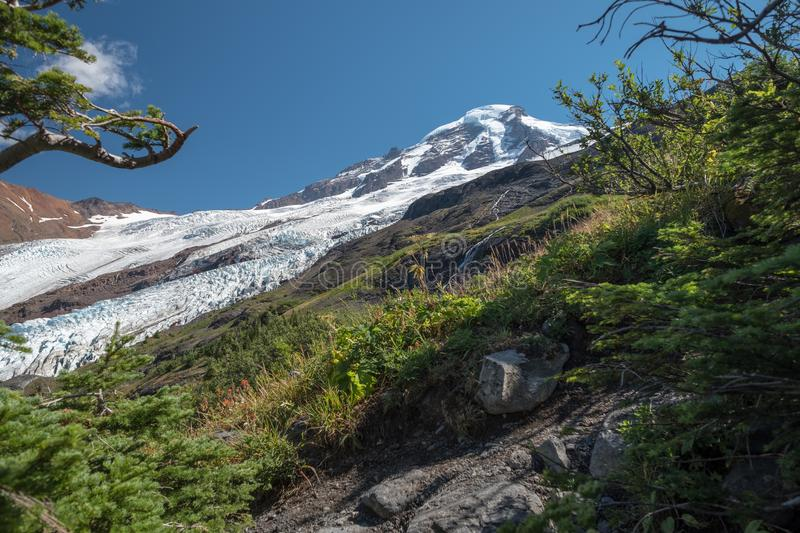 Coleman and Roosevelt Glaciers of Mount Baker from Hogsback trail stock photos