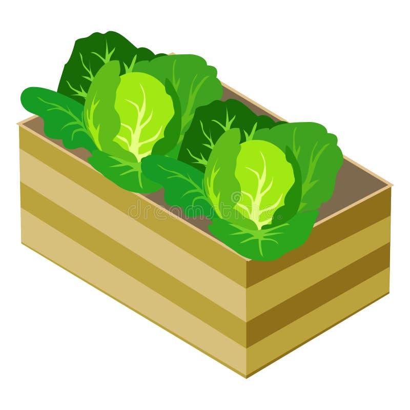 Coles verdes en la caja de madera aislada en blanco ilustración del vector