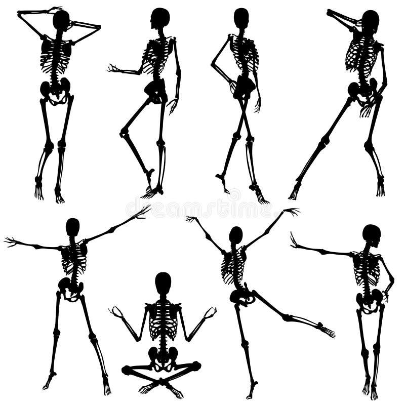 Colete silhuetas de esqueleto ilustração royalty free