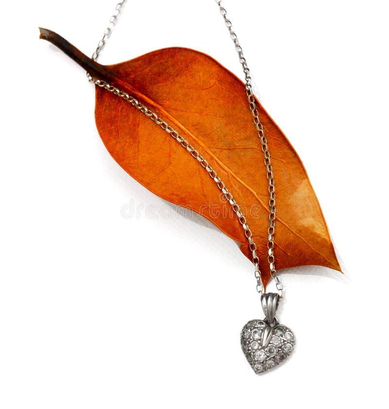 Colgante de plata del corazón del diamante en la hoja del otoño fotos de archivo