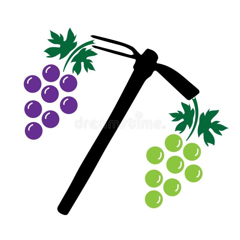 Colheita da uva - uva, enxada fotografia de stock royalty free