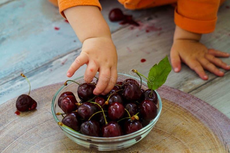 Colheita de cereja por um bebê imagens de stock royalty free