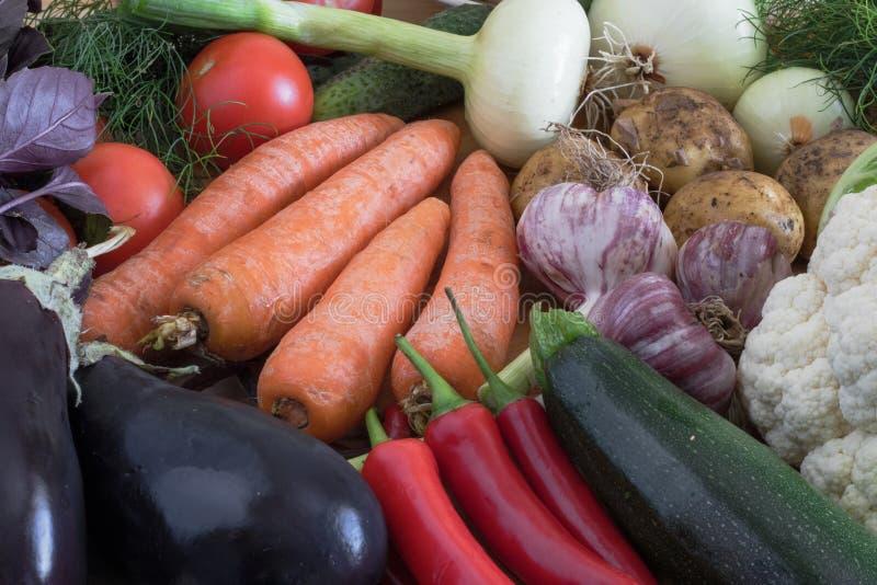Colheita do outono, composição dos vegetais, ingredientes para cozinhar pratos fotografia de stock royalty free