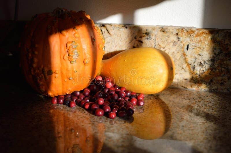 Colheita do outono da polpa da abóbora dos arandos das sombras da tarde imagem de stock