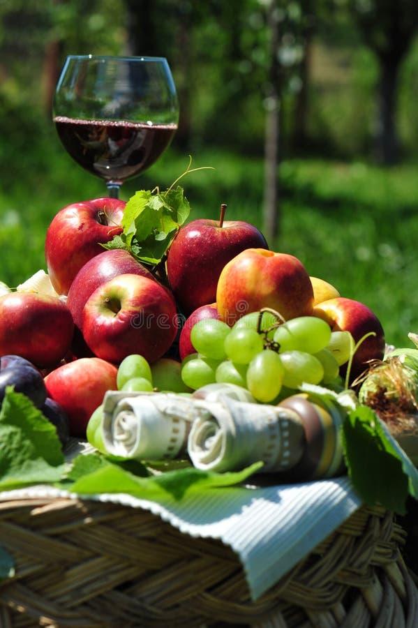 Colheita do outono: frutas e vinho sazonais imagens de stock royalty free