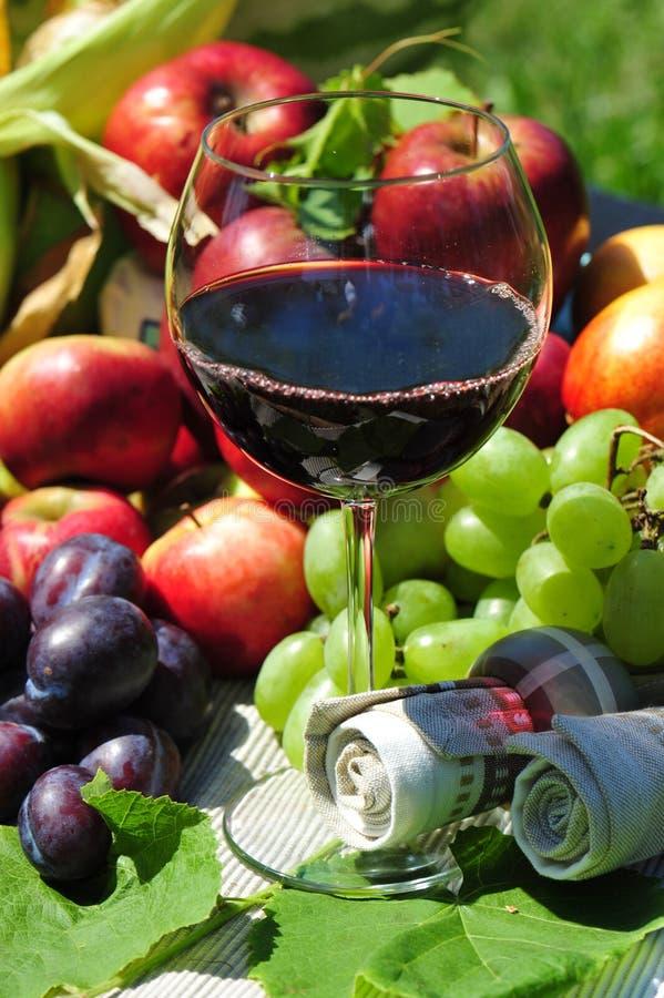 Colheita do outono: frutas sazonais e vinho vermelho fotografia de stock