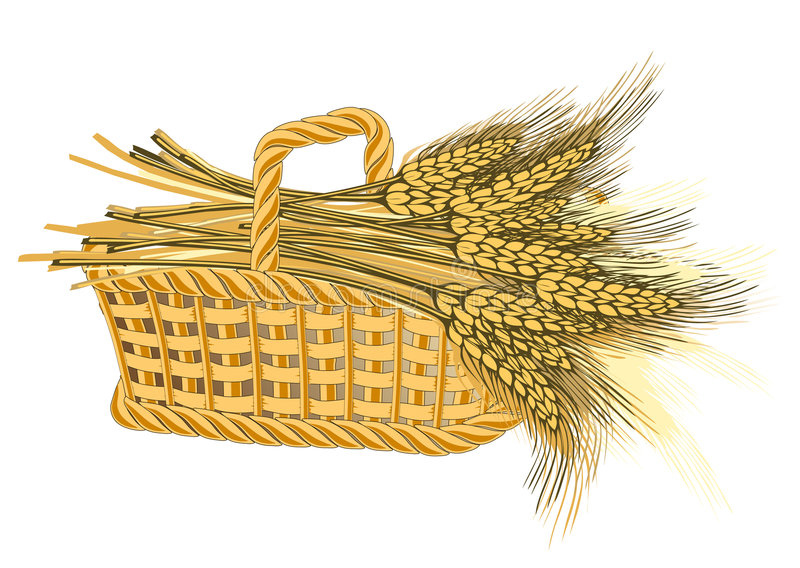 Colheita do trigo na cesta ilustração do vetor