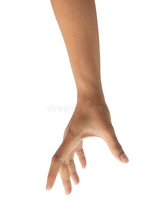 Colheita fêmea da mão algo isolado, trajeto de grampeamento fotos de stock royalty free