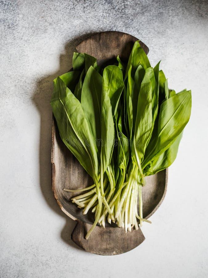 A colheita fresca do grupo do ramson da mola ou da erva do alho poró selvagem deixa o grupo na bandeja de madeira rústica no fund imagem de stock