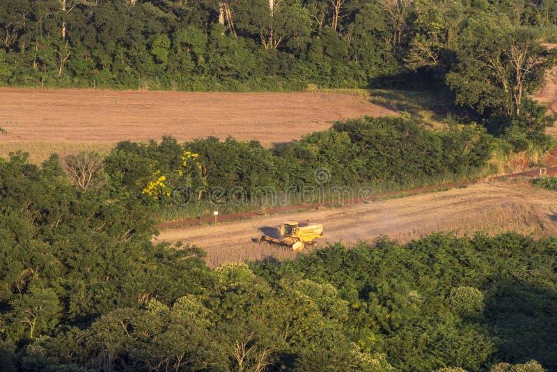 Colheita mecanizada do feijão de soja em uma exploração agrícola em Londrina imagens de stock