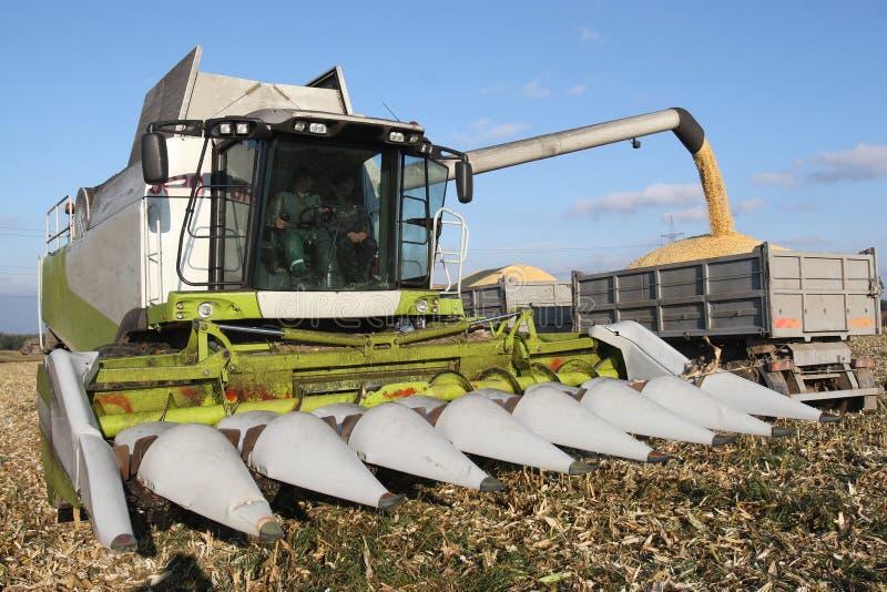 Colheita mecanizada uma colheita do milho imagens de stock