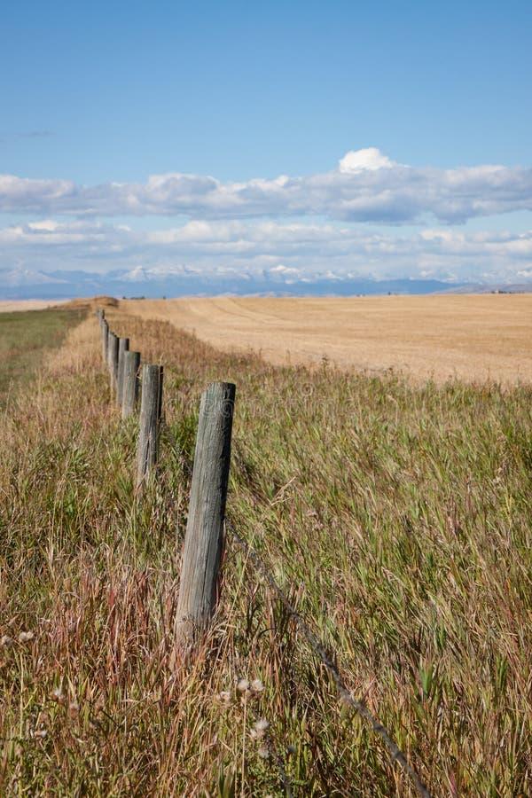 Colheita vertical da cerca de madeira Leading às montanhas e à pradaria S imagem de stock