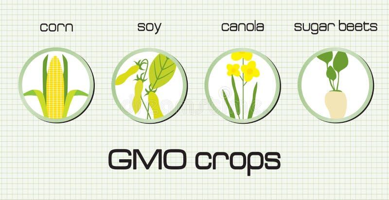 Colheitas de GMO ilustração stock