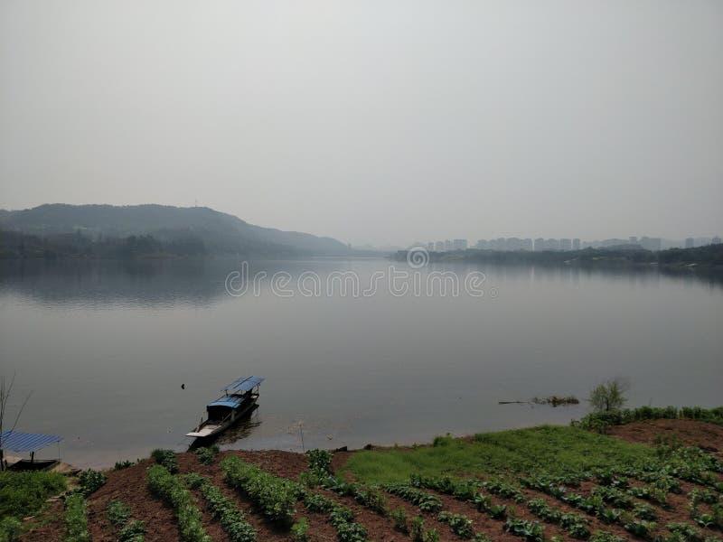 Colheitas perto do rio grande, com um barco e uma skyline borrada no fundo com céu contaminado imagens de stock