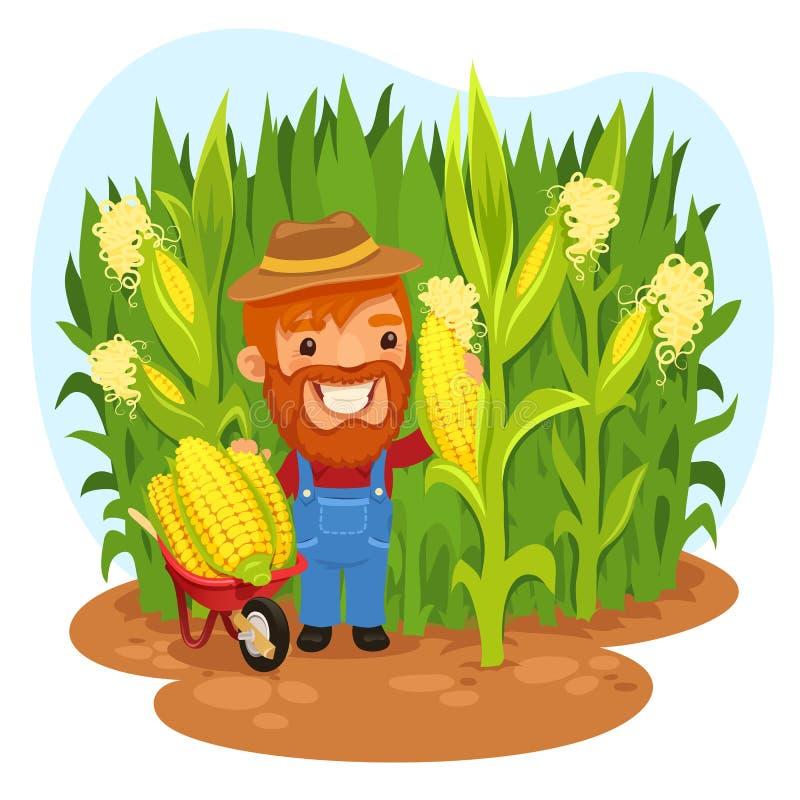 Colhendo o fazendeiro In um campo de milho ilustração do vetor