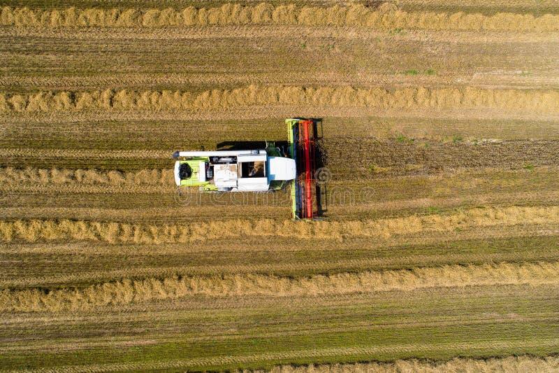 Colhendo o tema Conceito da indústria do combustível biológico foto de stock