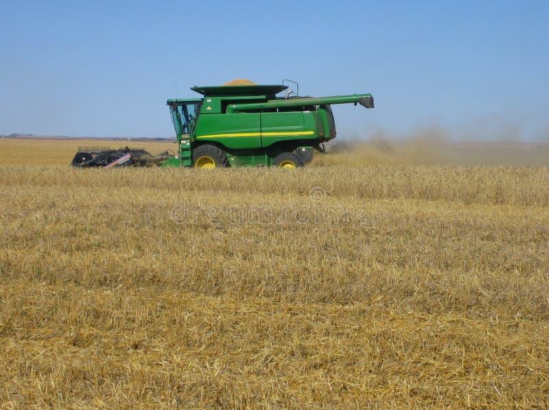Download Colhendo o trigo imagem de stock. Imagem de fazenda, industrial - 529975